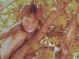 From climbing trees to working in wood, who is this little monkey?