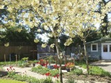 See our gallery of winning garden pictures